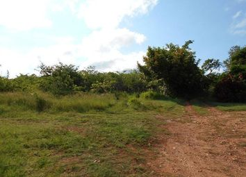 Thumbnail Land for sale in Falmouth, Trelawny, Jamaica