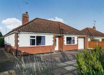 Thumbnail 4 bed bungalow to rent in Norwich Road, Wroxham, Norwich