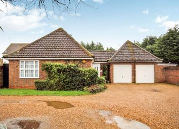 Thumbnail 2 bedroom bungalow for sale in South Woodham Ferrers, Chelmsford, Essex