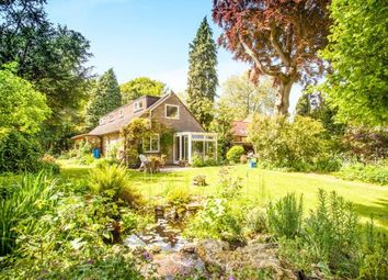 Thumbnail 4 bed bungalow for sale in Meldreth, Royston, Cambridgeshire