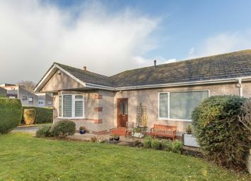 Thumbnail 3 bedroom bungalow for sale in Denoon Terrace, Dundee