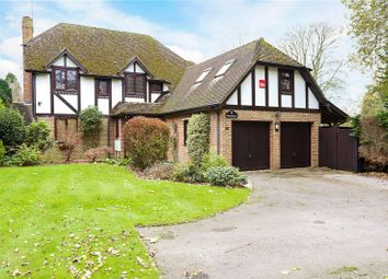 Thumbnail 4 bed detached house for sale in Goldenfields, Liphook, Hampshire