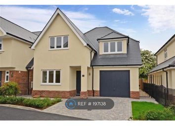 Thumbnail 4 bed detached house to rent in Glades Close, Romford, Essex
