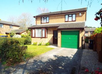 Thumbnail 4 bedroom detached house for sale in Stourpaine Road, Poole