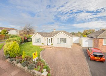Thumbnail 4 bed detached bungalow for sale in Nut Bush Lane, Torquay