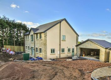 Thumbnail 4 bed detached house for sale in School Crescent, School Road, Joys Green, Lydbrook