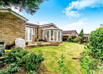 Thumbnail 3 bed bungalow to rent in Bowers Close, Riseley, Bedford