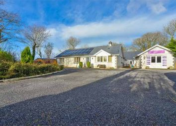 Thumbnail 4 bed detached bungalow for sale in Capel Hendre, Ammanford, Dyfed