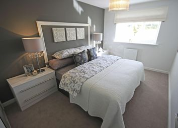 "Thumbnail 4 bed detached house for sale in ""Tavistock"" at Ponds Court Business, Genesis Way, Consett"