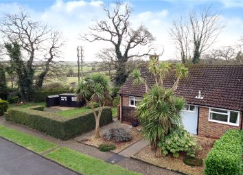 Thumbnail 3 bed bungalow for sale in Stewards Rise, Arundel