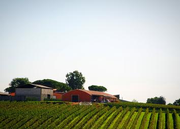 Thumbnail Farm for sale in Centre, Rome City, Rome, Lazio, Italy
