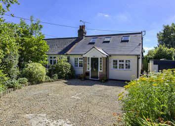 Thumbnail 4 bed equestrian property for sale in Peter Street, Stock, Ingatestone