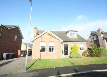 Thumbnail 4 bed detached house for sale in Graysfield, Crossgar, Downpatrick