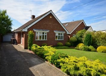 Thumbnail 2 bed detached bungalow to rent in Corby Road, Weldon, Corby