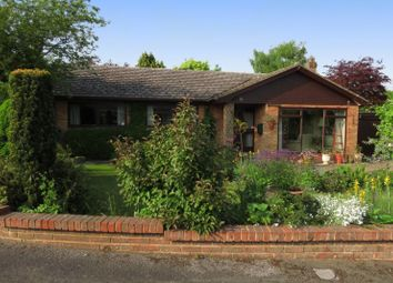Thumbnail 3 bed detached bungalow to rent in Rivacres, Whitchurch Hill, Reading