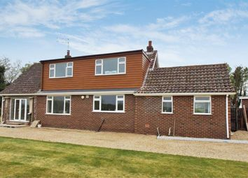 Thumbnail 4 bed property to rent in Langwith Lane, Heslington, York