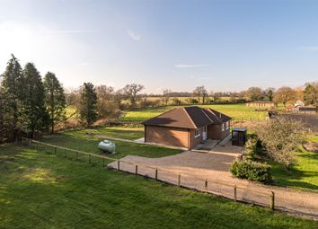Thumbnail 2 bed detached bungalow to rent in Bunce Common Road, Leigh, Reigate, Surrey