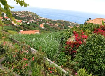 Thumbnail 3 bed villa for sale in Ponta Do Sol, Portugal