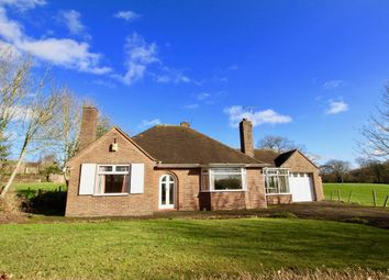 Thumbnail 3 bed detached bungalow to rent in Church Lane, Oulton, Stone, Staffordshire