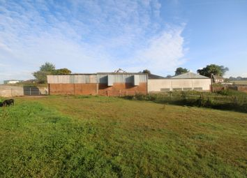 Thumbnail Land for sale in Down St. Mary, Crediton