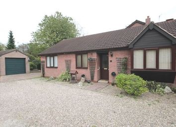 Thumbnail 3 bed bungalow to rent in Hawke Close, Norton, Doncaster