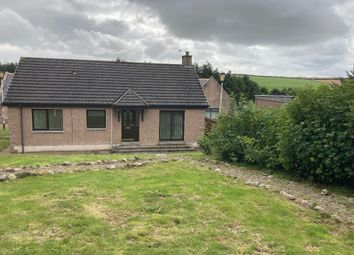 Thumbnail 3 bed bungalow to rent in Hatton, Peterhead, Aberdeenshire