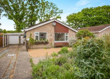 Thumbnail 2 bedroom bungalow for sale in Necton, Swaffham