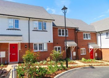 Thumbnail 4 bed property to rent in Woodlands Way, Hastings