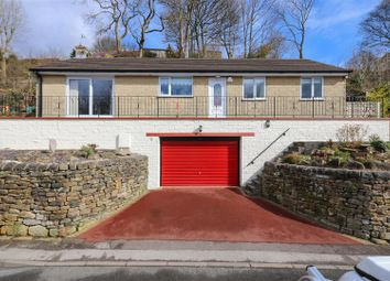 Thumbnail 3 bed detached bungalow for sale in Hillside View, Hackney Road, Hackney, Matlock