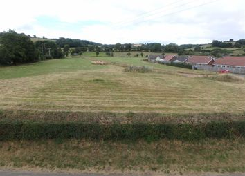 Thumbnail Land for sale in 3.93 Hectares (9.71 Acres), Peterchurch, Hereford