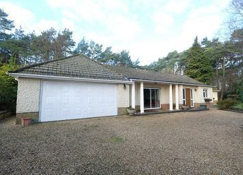 Thumbnail 5 bed bungalow for sale in Hill Top, Beaulieu