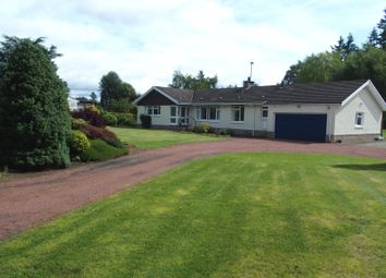 Thumbnail 5 bedroom bungalow for sale in Golf Course Road, Blairgowrie