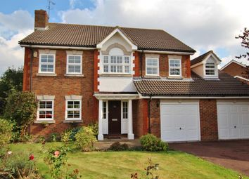 Thumbnail 5 bed detached house to rent in Oldbury Close, Horsham