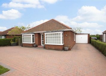 Thumbnail 3 bed bungalow for sale in Ferry Road, South Cave, East Riding Of Yorkshire