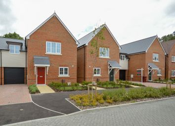 Thumbnail 3 bed semi-detached house to rent in Priors Orchard, Southbourne