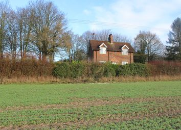 Thumbnail Cottage for sale in Easton Lane, Winchester
