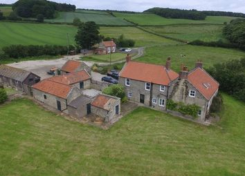 Thumbnail 5 bed farm to rent in Nineteenlands Farmhouse, Lythe, Whitby