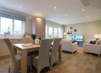 Thumbnail 3 bed semi-detached house for sale in New Odiham Road, Alton, Hampshire