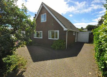 Thumbnail 4 bed detached house to rent in Mold Road, Mynydd Isa, Mold