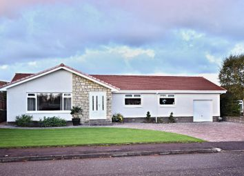 Thumbnail 4 bedroom bungalow for sale in Glenalla Crescent, Ayr