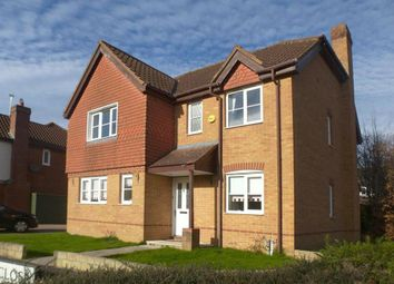 Thumbnail 4 bed detached house to rent in Tracy Close, Abbey Meads, Swindon. 4Ys.