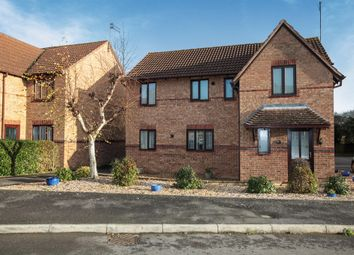 Thumbnail 4 bed detached house for sale in Sycamore Drive, Desborough, Kettering