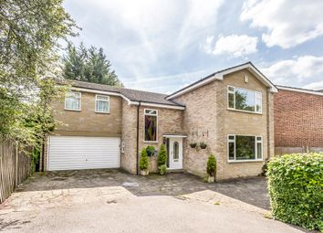 Thumbnail 4 bed detached house for sale in Chestnut Walk, Woodford Green