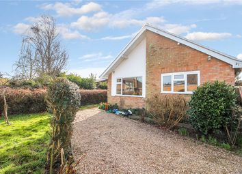 Thumbnail 2 bed detached bungalow to rent in Malten Close, Poringland, Norwich, Norfolk