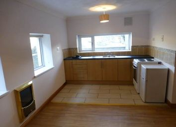 Thumbnail 2 bed flat to rent in Capel Dewi, Carmarthen