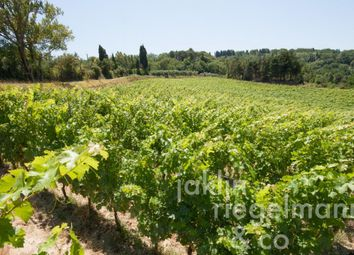 Thumbnail Farm for sale in Italy, Tuscany, Pisa.