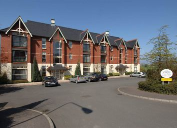 Thumbnail 2 bed flat to rent in 6, Block 3, The Parks, Holywood