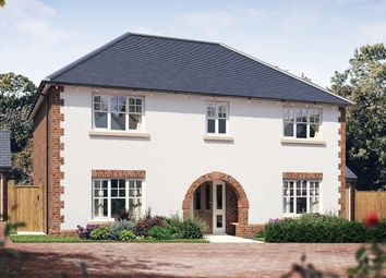 Thumbnail 4 bedroom detached house for sale in Radbourne Lane, Derby