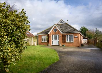 Thumbnail 2 bedroom detached house for sale in North Road, Bunwell, Norwich