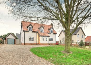 Thumbnail 3 bed detached house for sale in High Green, Norwich